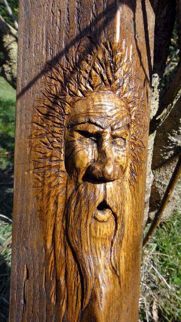 Chainsaw Artis Gallery | Wood spirit carving close-up