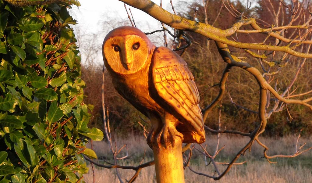 Chainsaw carved Barn Owl perched on a post in the Norfolk countryside